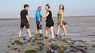Sandbank Excursion